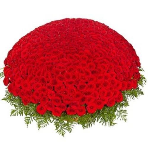 Купить на заказ 301  роза с доставкой в Туркестане